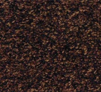 schoonloopmat special bruin