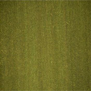 kokosmat groen