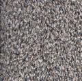 moesson dry-luxe kiezel (NIEUW) 49,95 per meter