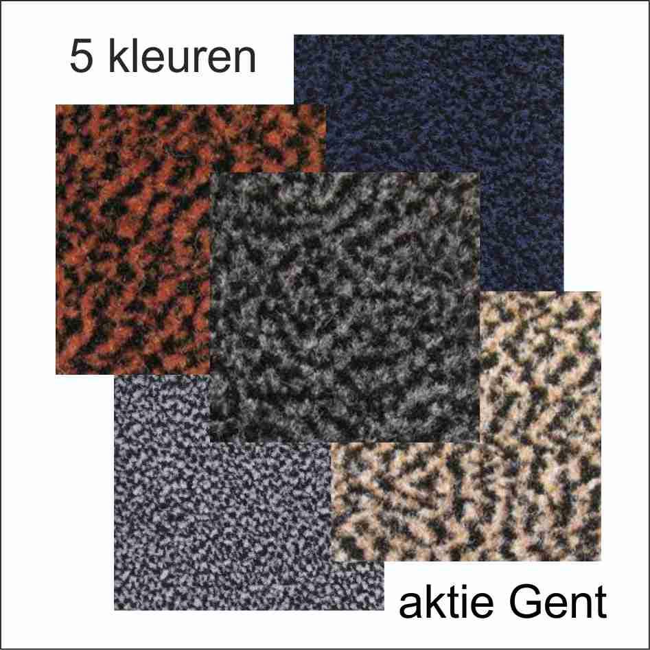 schoonloopmat aktie Gent